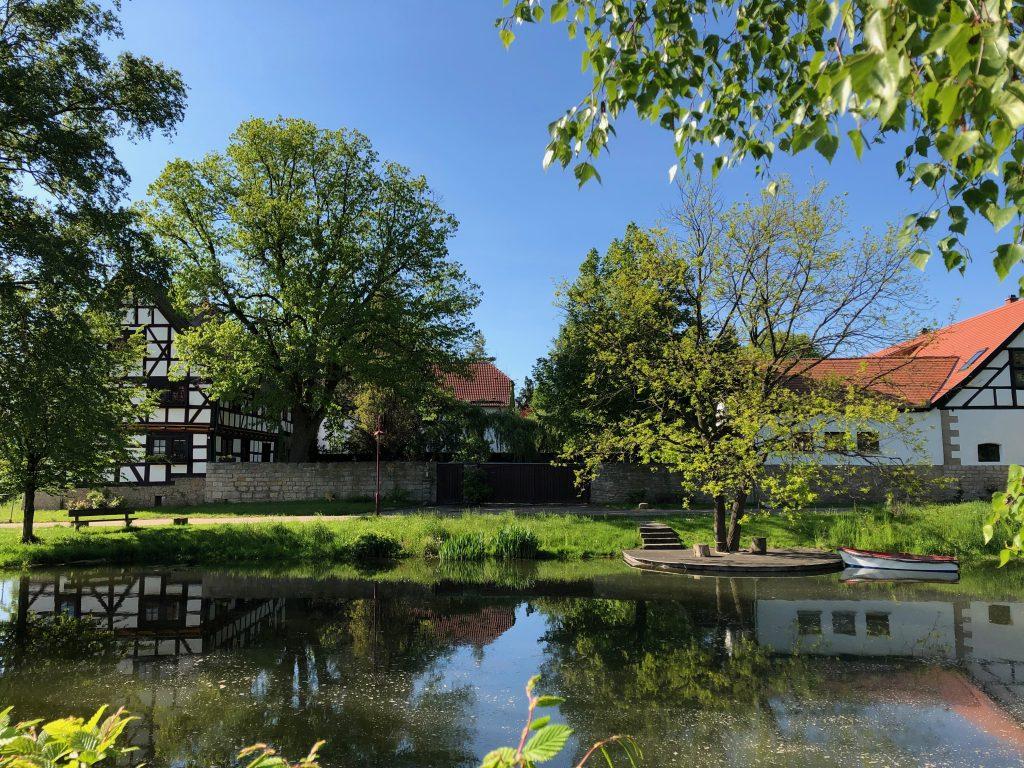 2019-05_alter_Dorfteich_Oesterbehringen